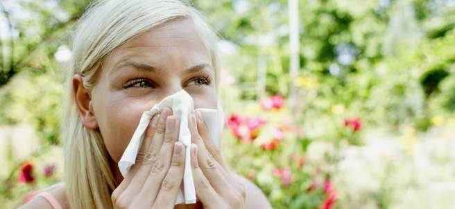 estornudos por inhalar polen del olivo