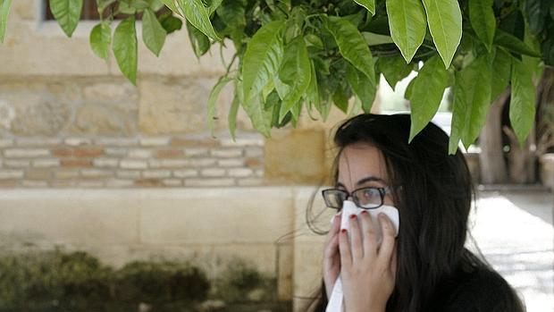 alergia al polvillo de la rapa