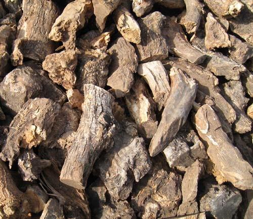 leña de olivo para chimenea