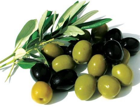 aceitunas del olivo